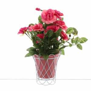Цветы в горшке Royal Classics 35433 2